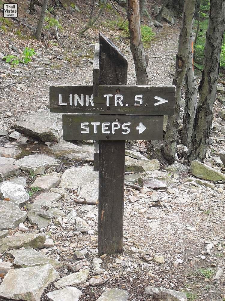 1000 steps top sign 01