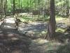 Flat Rock Nature Center Creek