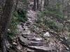 Hawk Rock Trail Rugged