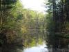 ibberson-pond
